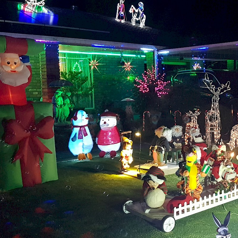 Finley Christmas Lights and Farm Gate - Enter Here image